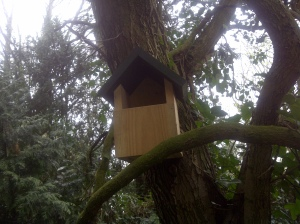 Annie, this is for you:  the open-fronted robin nest box