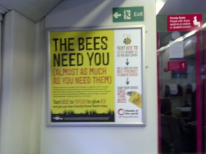 Bees on the London train