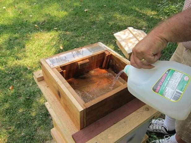 Pouring a sugar syrup mixture into a custom feeder that fits onto the hive  By Kevin Pauba (Kevin Pauba) [CC BY 4.0 (http://creativecommons.org/licenses/by/4.0)], via Wikimedia Commons